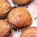 生トリ貝 殻付きトリ貝 三重・愛知産 他 1個70-100g・計1kg 築地直送 高級貝類 国産 カラトリ 鳥貝 職人の食材【カラトリ70−100gx1K】