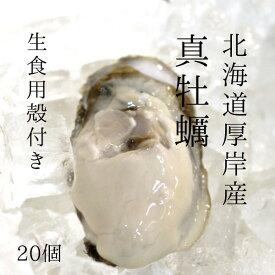殻付き牡蠣 厚岸産 北海道 生食用 100-120g/個(Lサイズ) 計20個 真牡蠣 カキ かき【厚岸牡蠣100-120gx20個】 冷蔵