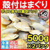 hamaguri蛤蜊<1kg.500g*2巴裏紗冷凍>鮮度擅長活kitahamaguriha的rn