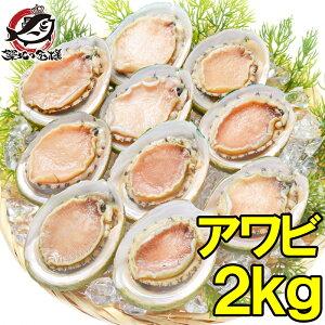 【送料無料】あわび Lサイズ 2kg 合計24個 1箱12個入り 殻つきお刺身用アワビ 高級料亭でも使用する新鮮な殻付きあわび!【あわび アワビ 鮑 お造り バター焼き ステーキ おせち 翡翠の瞳 貝