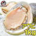 あわび Lサイズ 1kg 1箱12個入り 殻つきお刺身用アワビ 高級料亭でも使用する新鮮な殻付きあわび!【あわび アワビ 鮑…