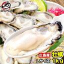 【カキ 送料無料】広島産 牡蠣 冷凍 1kg 大粒 牡蠣むき身 Lサイズ 殻剥き不要&小さくなりにくい加熱用で濃厚な風味で…