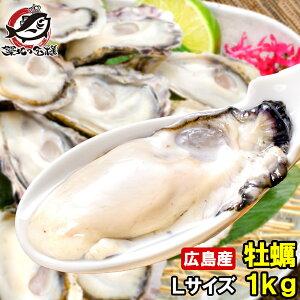 広島産 カキ 牡蠣 1kg 大粒 牡蠣むき身 Lサイズ 殻剥き不要&小さくなりにくい加熱用で濃厚な風味です!【冷凍生牡蠣 冷凍 生牡蠣 かき カキ 牡蛎 牡蠣鍋 カキフライ 牡蠣フライ 築地市場 豊