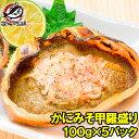 かにみそ甲羅盛り 100g×5個 日本海産の紅ズワイガニを使用!【ズワイガニ ずわいがに かに カニ 蟹 ズワイ かに甲羅盛り 浜焼き かにみそ カニミソ カニ味噌 豊洲市場 ギフト】rns