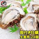 【送料無料 生牡蠣 殻付き 生食用カキ】生牡蠣 24個入り 冷凍殻付き牡蠣 生食用 新製法で冷凍なのに生食可能な殻付き…