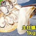 生牡蠣 1kg 生食用カキ 冷凍時1kg 解凍後850g 冷凍むき身牡蠣 生食用 新製法で冷凍なのに生食可能な牡蠣で濃厚な風味…