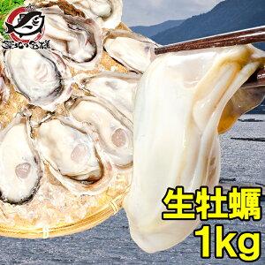 生牡蠣 1kg 生食用カキ 冷凍時1kg 解凍後850g 冷凍むき身牡蠣 生食用 新製法で冷凍なのに生食可能な牡蠣で濃厚な風味【冷凍 生ガキ かき カキ 牡蛎 牡蠣鍋 カキフライ 牡蠣フライ 築地市場 豊