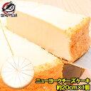 ニューヨークチーズケーキ プレーン ホール910g 14カット 直径約20cm 【NYチーズケーキ 冷凍スイーツ 冷凍デザート 冷…