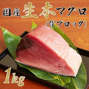 【送料無料】国産生本マグロ(養殖)背ブロック 中トロ・赤身たっぷり1kg まぐろ 本鮪 刺身 クロマグロ 巻き寿司 海鮮 パーティー お祝い 贈り物 母の日 父の日