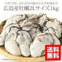 広島産牡蠣(カキ)2Lサイズ1kg [加熱用・解凍後約850g]【かき】【牡蠣】【05P09Jan16】