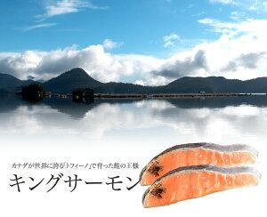 ≪自然の恵み・養殖≫キングサーモン 切り身 1切れ真空パック×2 カナダ/トフィーノで育ったキングサーモン