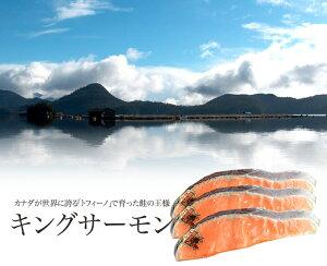 ≪自然の恵み・養殖≫キングサーモン 切り身 1切れ真空パック×3 カナダ/トフィーノで育ったキングサーモン