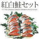 紅鮭&時鮭の紅白鮭各10切れ計20切セット【送料無料】【お歳暮】【ギフト】【05P09Jan16】