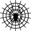 蜘蛛【黒】
