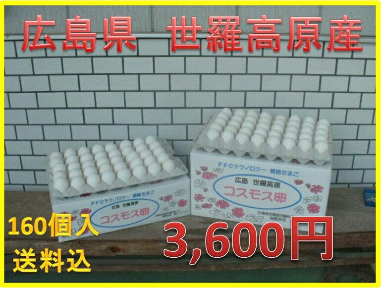 【送料込】コスモス卵 白玉 160個入り 02P19Dec15