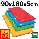 体操マット エステル カラーマット 体操カラーマット SGマーク付 90×180×厚5cm 送料無料