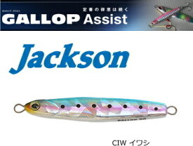 ジャクソン (Jackson) ギャロップ アシスト 20g #CIW イワシ / メタルジグ (メール便可) (O01)
