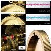 shimanooshiakonkuesuto 301HG(左側方向盤)