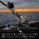 64チタン製 クエ用 ツインシャフト 竿受け/竿立て アラ モロコ 磯釣り 板バネ ピトン