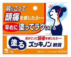【第3類医薬品】頭痛・肩こりに 小林製薬 塗るズッキノンa軟膏 (15g) ツルハドラッグ