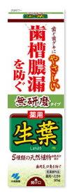 小林製薬 薬用 生葉 しょうようm 無研磨タイプ (95g) 薬用ハミガキ 【医薬部外品】 ツルハドラッグ