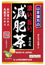 山本漢方 濃い旨い 減肥茶 (10g×24包) ダイエットサポート ノンカフェイン ※軽減税率対象商品