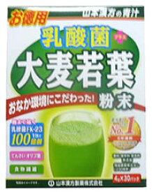 山本漢方 乳酸菌大麦若葉 粉末 お徳用 (4g×30包) 青汁 オリゴ糖 乳酸菌 ツルハドラッグ