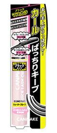 井田ラボラトリーズ キャンメイク クイックラッシュカーラー BK ブラック (1個) マスカラ下地