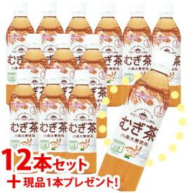 【特売】 ※おまけ付き※ 《セット販売》 和光堂 ベビー飲料 ベビーのじかん むぎ茶 1ヶ月頃から (500mL)×12本セット +1本プレゼント