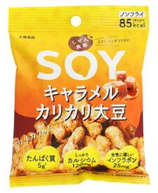 大塚食品 しぜん食感 SOY キャラメルカリカリ大豆 (21g) 大豆菓子 ※軽減税率対象商品