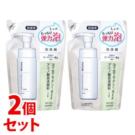 《セット販売》 ちふれ化粧品 泡洗顔S つめかえ用 (180mL)×2個セット 詰め替え用 CHIFURE