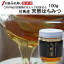 【新物入荷!】小さな瓶入り 希少な日本ミツバチの蜂蜜 濃厚で栄養価の高い純粋ハチミツです 対馬産 天然はちみつ 100g 冷凍品や冷…