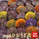 【送料無料】 対馬産 ヒオウギ貝 30個入 ギフト 贈り物 ひおうぎ貝 檜扇貝 緋扇貝 バーベキュー 浜焼き バター焼き 魚介類・シーフー…
