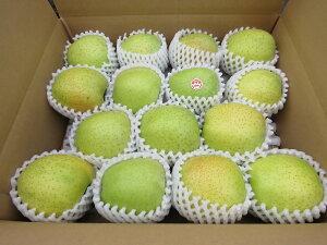 【送料無料】 青森県産りんご 贈答用 王林5kg青森 りんご 5kg 送料無料/贈答用りんご
