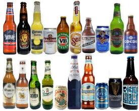 世界のビール 20ヶ国飲み比べ [スタンダード] 20本ビールセット 【説明書付】【ビール】【ビア】【BEER】【送料無料】【ギフト】