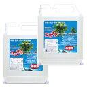 ココナツ 洗剤 お徳用4L 2本セット 【健康と環境をまもるココナッツ洗剤 シャンプーにも】【ブルーシーインターナシ…