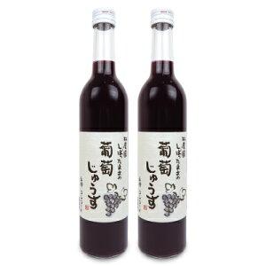 林農園 しぼったままの100% 葡萄ジュース コンコード 赤 500ml × 2本 [五一わいん]