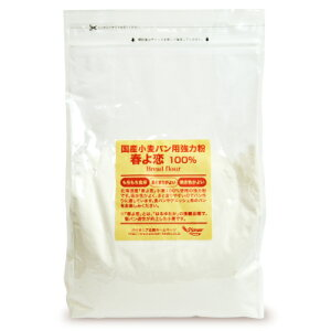 パイオニア企画 国産小麦パン用強力粉春よ恋100% 2kg