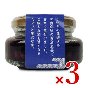 【8/1限定クーポン発行中!】《送料無料》四万十生産 うなぎ生姜 80g × 3個 瓶