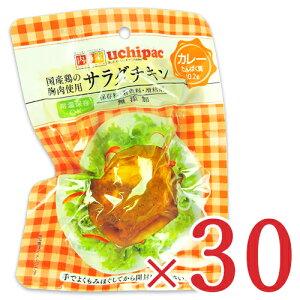 《送料無料》内野家 uchipac 国産鶏 サラダチキン カレー 100g × 30個 セット ケース販売