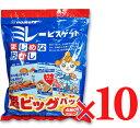 《送料無料》 野村煎豆加工店 ミレービスケット 超ビッグパック 480g(30g×16袋) 10パック 【ビスケット 菓子 おか…