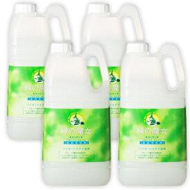 《送料無料》緑の魔女 キッチン (食器用洗剤) 2L × 4個 [ミマスクリーンケア]