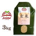 ソラベル 玄米 3kg 青森県産 品種:まっしぐら(うるち米)[Solabel]【無農薬 無肥料 自然栽培】《あす楽》