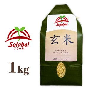 ソラベル 玄米 1kg 青森県産 [Solabel] 品種:まっしぐら(うるち米)【無農薬 無肥料 自然栽培】《あす楽》