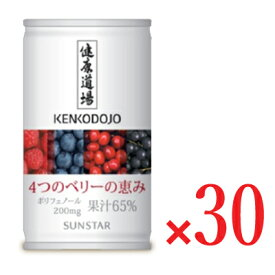 サンスター 健康道場 4つのベリーの恵み 缶 160g × 30本入り 【ケース販売】《送料無料》