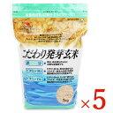 《送料無料》大潟村あきたこまち生産者協会 こだわり発芽玄米 栄養機能食品(鉄分・ビタミンB1・B6強化)1kg × 5袋 …