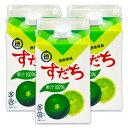 《送料無料》JA徳島 徳島市農業協同組合 すだち果汁 500ml × 3個《あす楽》