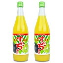 JA徳島 徳島市農業協同組合 すだち果汁 720ml × 2個《あす楽》