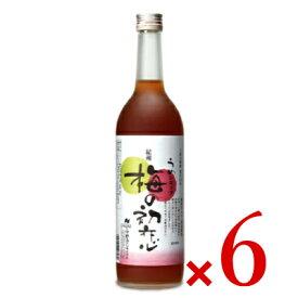 《送料無料》中野BC 梅の初恋 瓶 720ml × 6本 ケース販売