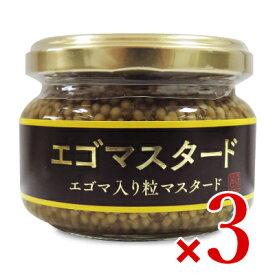 浅沼醤油店 エゴマスタード 120g × 3個